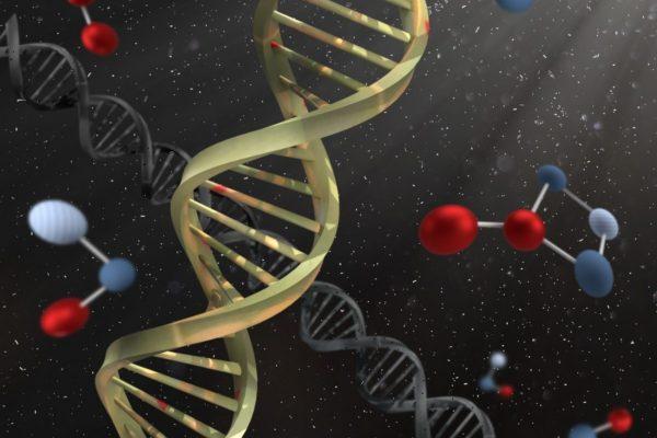 Analisi di OGM